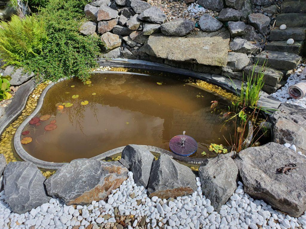 Kleiner Teich mit Natursteinen im Garten